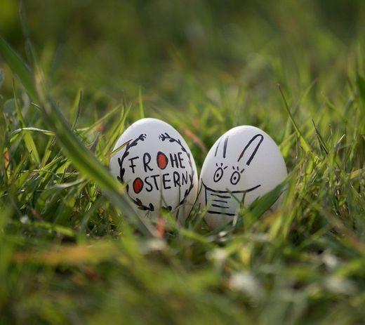 Zwei Eier auf einer Wiese